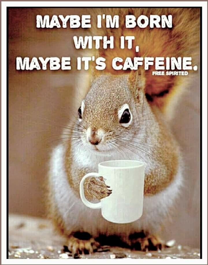 ☮ * ° ♥ ˚ℒℴѵℯ cjf | Coffee in 2019 | Coffee meme, Coffee cafe ... #iLoveCoffee