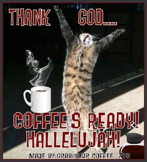 Thank God... Coffee's Ready! Hallelujah! Cat meme coffee quote ... #iLoveCoffee