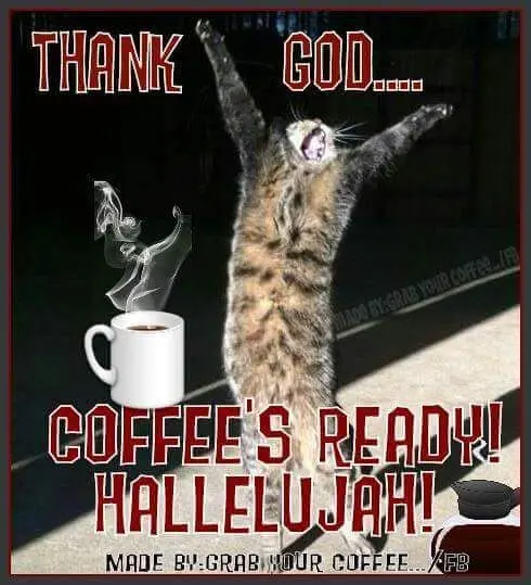 Thank God... Coffee's Ready! Hallelujah! Cat meme coffee quote ... #iLoveCoffee