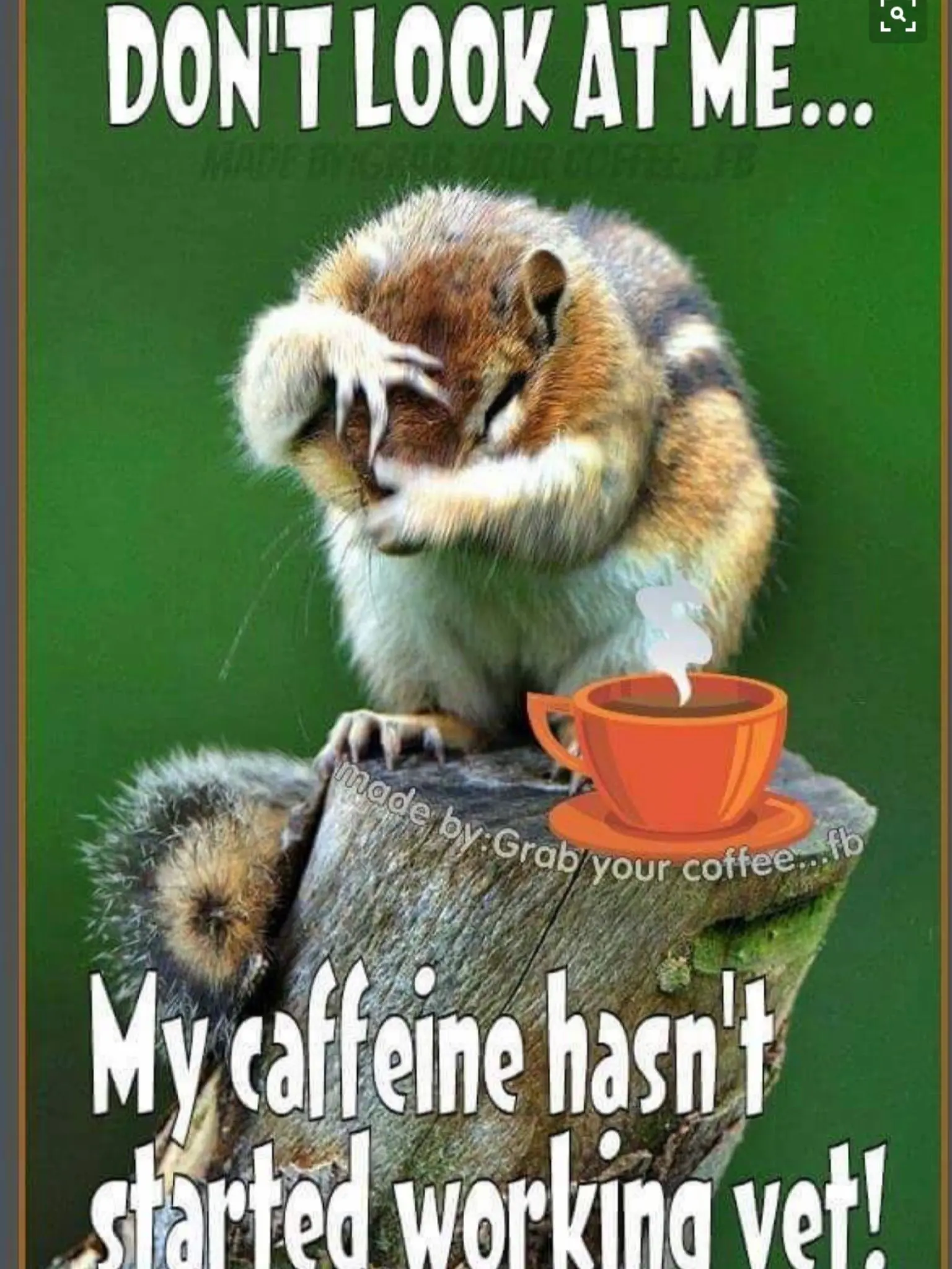 Don't Look At Me... My Caffeine Hasn't Kicked In Yet ;)☕ | I ... #iLoveCoffee