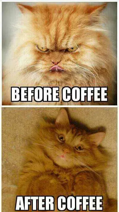 the ungeetered vs. geetered. coffeeFIEND. | Coffee | Coffee humor ... #iLoveCoffee