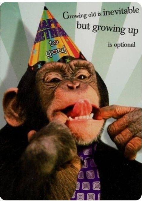 Pin by Beth Harrington on Birthdays   Funny happy birthday wishes ... #birthdayCoffee