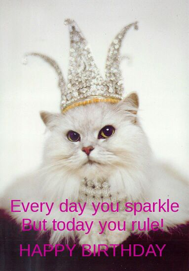 It's all about being the princess! | Cat Lover | Happy birthday ... #birthdayCoffee