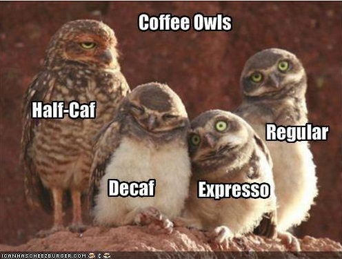 Funny Unique Memes: Morning Coffee Memes #decafCoffee