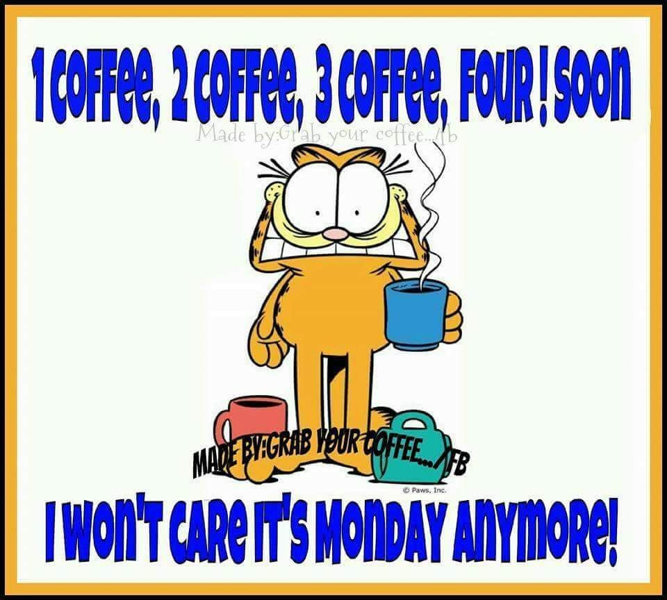 Garfield meme Monday coffee quote. | Garfield | Monday coffee ... #funnyCoffeeShop