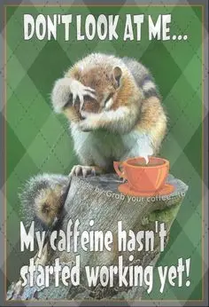 601 Best Coffee meme images in 2019 | Coffee, Coffee humor, Coffee ... #funnyCoffeeShop