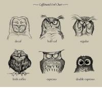 25+ Best Coffee Humor Memes | Chart Memes, Halfs Memes ... #irishCoffee