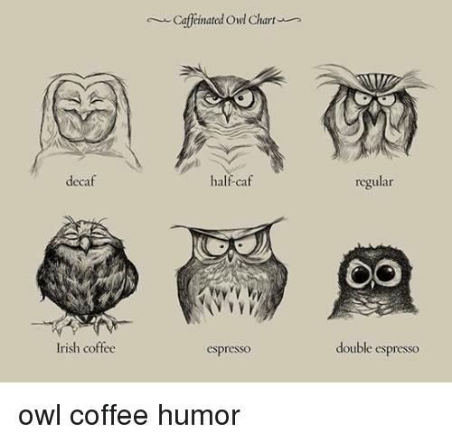 Manday Checklist Coffee Coffee Coffee Coffee Here's Some Monday ... #irishCoffee