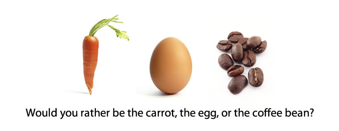 Are You a Carrot, Egg, or Coffee Bean? | Alan Wong's #coffeeBean