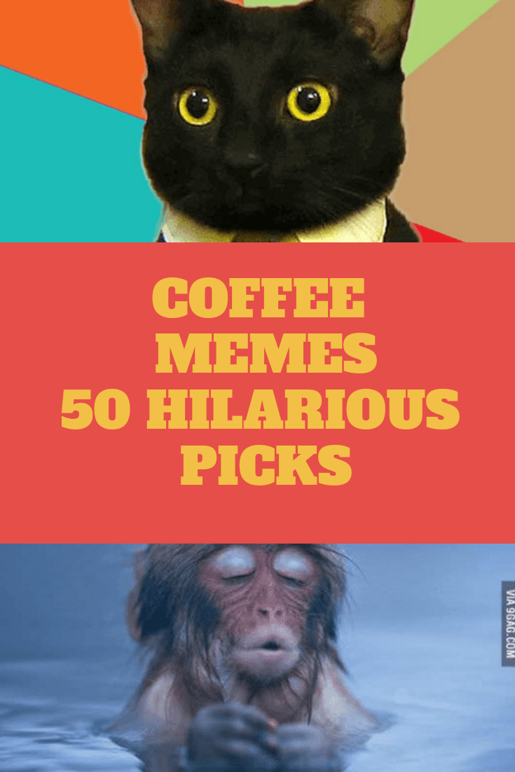 50 Funny Coffee Memes to laugh all the way to the cafe #coffeeNow
