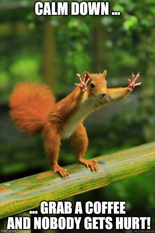 Wait a Minute Squirrel - Imgflip #coffeeNow