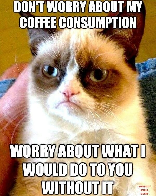 National Coffee Day: Signs You're Addicted to Coffee [Gifs]   Vibe #angryCoffee