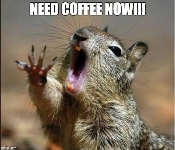 20 Funny Memes For Coffee Lovers | SayingImages.com #coffeeLovers