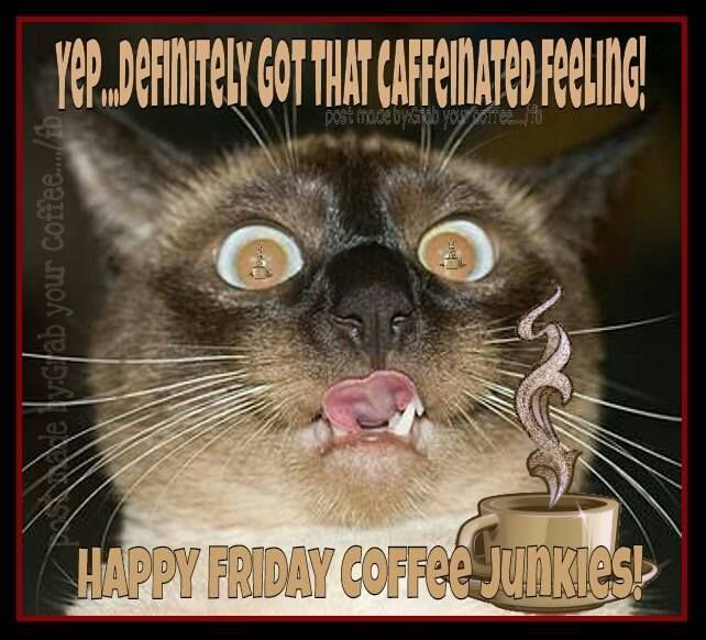 "Sips & Sarcasm Gourmet Coffee on Twitter: ""Happy Friday my Friends ... #goodMorningCoffee"