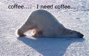 polar bear quotes - Bing Images | animals | Coffee humor, Coffee ... #needCoffee