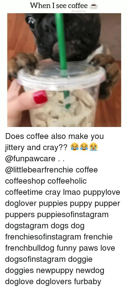 🅱   25+ Best Memes About Coffeeholic   Coffeeholic Memes #notEnoughCoffee