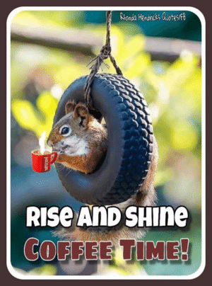 25+ Best a Kappa Memes | Rhonda Memes, Viva Memes #coffeeTime